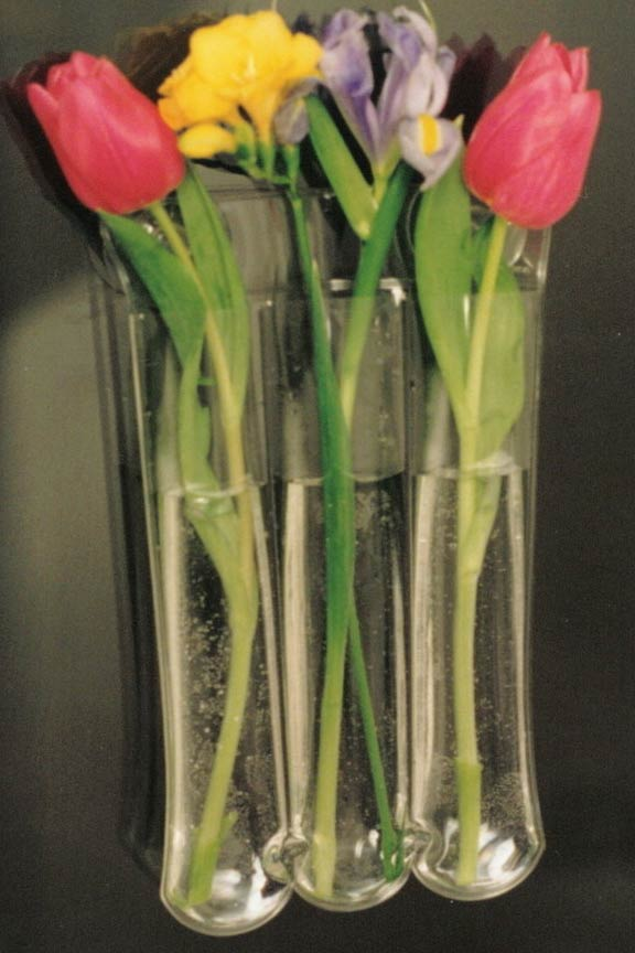 Hold Three Groupings of Flowers and Suspend With Two Strong Suction Cups.