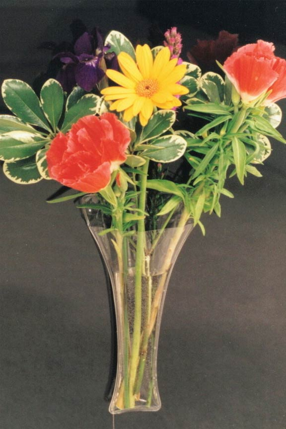 Hold Several Stems and Suspend With Two Strong Suction Cups.